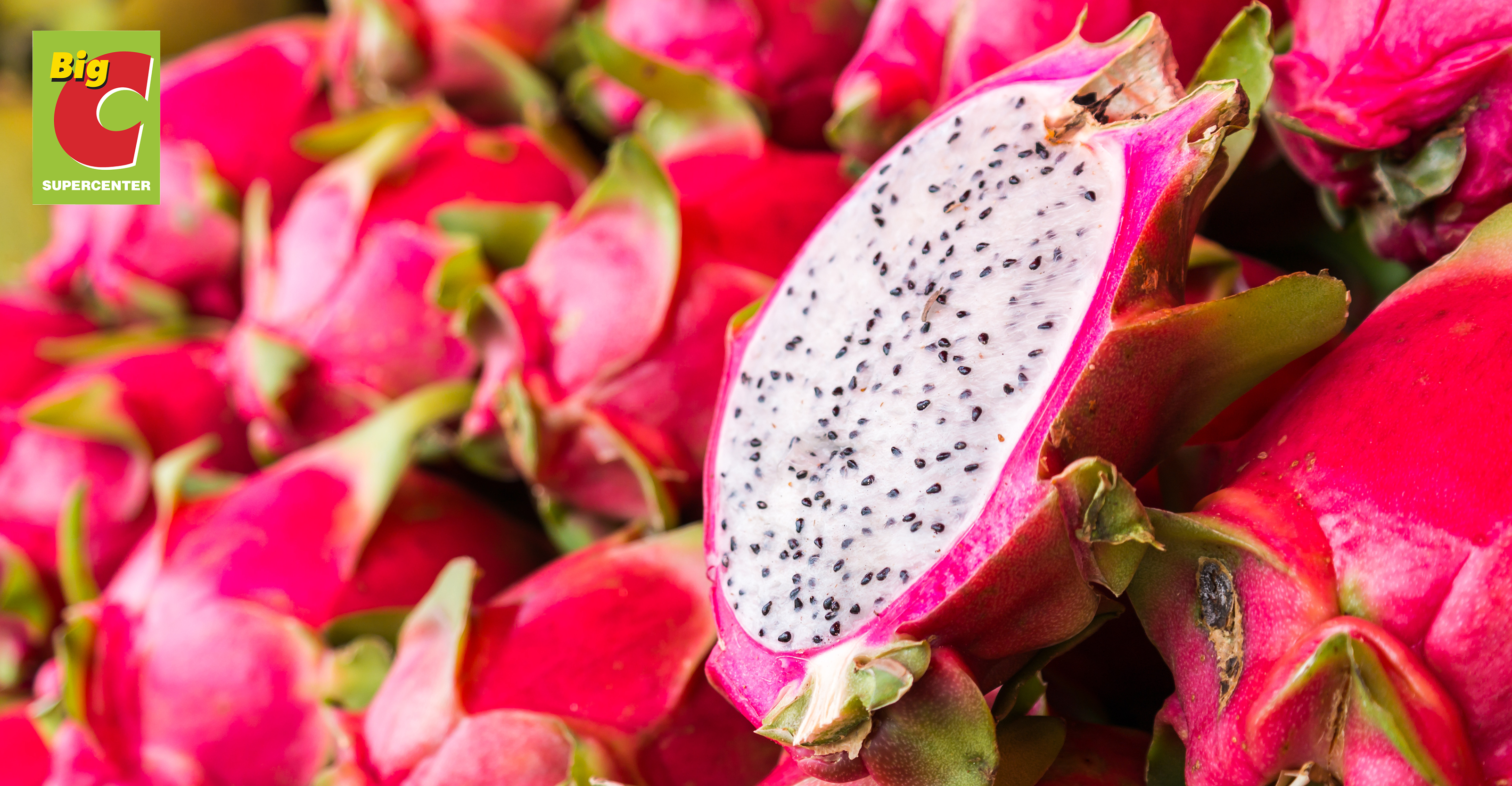 Big C & GO! to assist local farmers in marketing and selling 500 tons of Binh Thuan dragon fruits